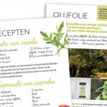 smakelijk ontwerp voor olijfolie
