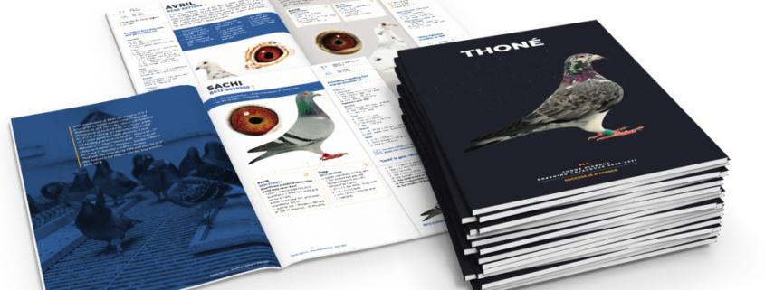 grafisch ontwerp brochure duiven